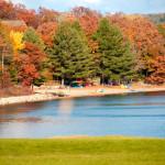 Fall colours at WWV