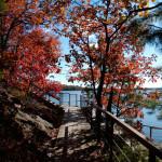 fall_Walkway